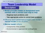 team leadership model