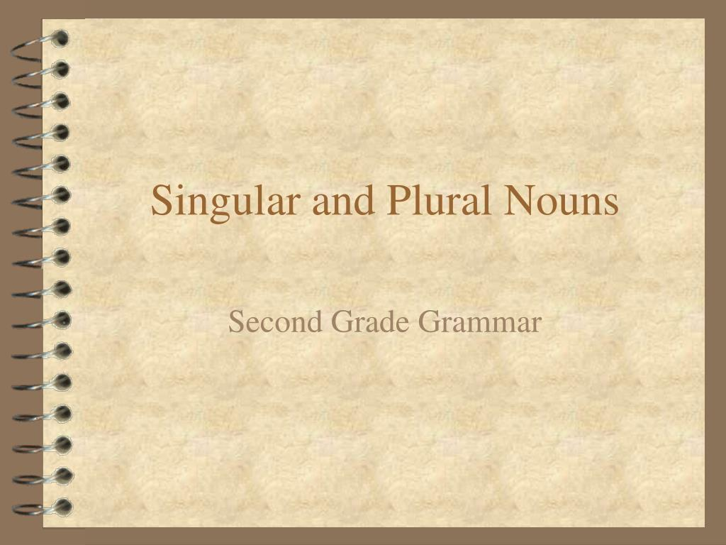 singular and plural nouns l.