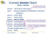 example domain object whois t domain