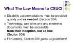 what the law means to csuci