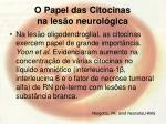 o papel das citocinas na les o neurol gica