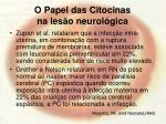 o papel das citocinas na les o neurol gica72