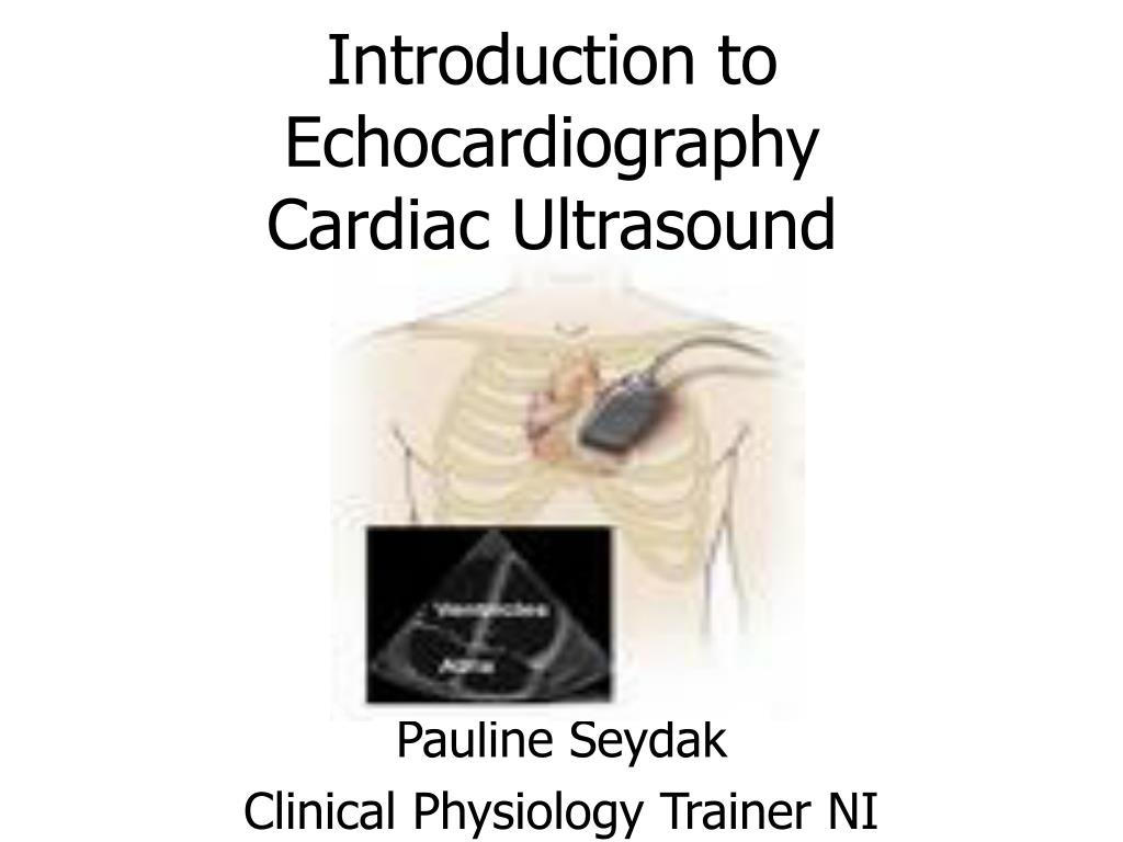 introduction to echocardiography cardiac ultrasound l.