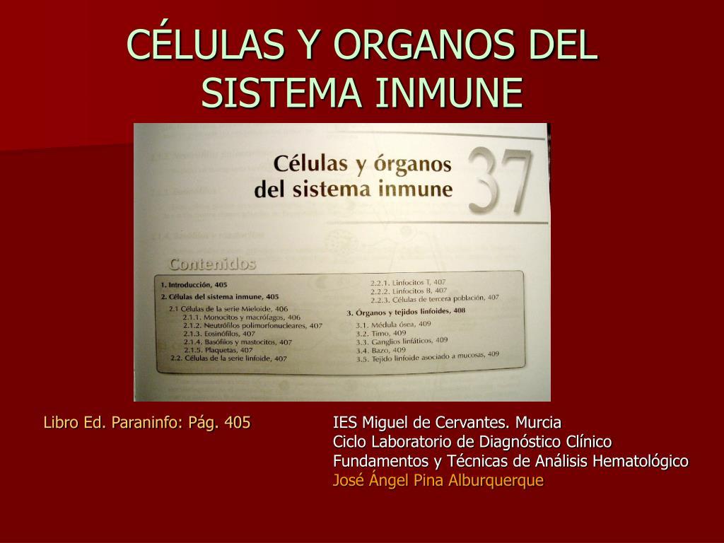 c lulas y organos del sistema inmune l.