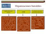 organizaciones burs tiles17