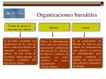 organizaciones burs tiles18