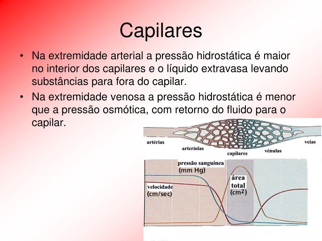 Capilares