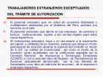trabajadores extranjeros exceptuados del tr mite de autorizaci n7