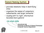 domain naming system