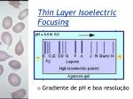 thin layer isoelectric focusing