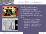 raster bitmap images
