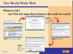 the world wide web21