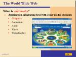 the world wide web32