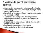 a an lise do perfil profissional objetiva