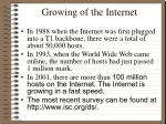 growing of the internet