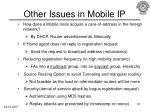 other issues in mobile ip