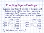 counting pigeon feedings