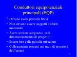 conduttori equipotenziali principali eqp