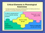 critical elements in phonological awareness