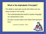 what is the alphabetic principle