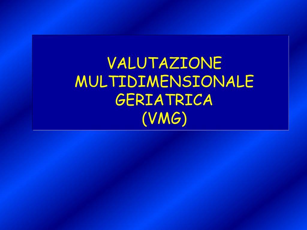 valutazione multidimensionale geriatrica vmg l.
