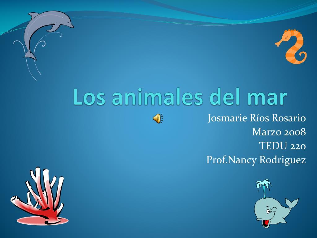 los animales del mar l.