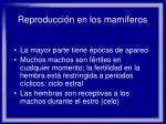 reproducci n en los mam feros51