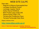 web site djlpe