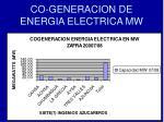 co generacion de energia electrica mw