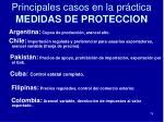 principales casos en la pr ctica medidas de proteccion74