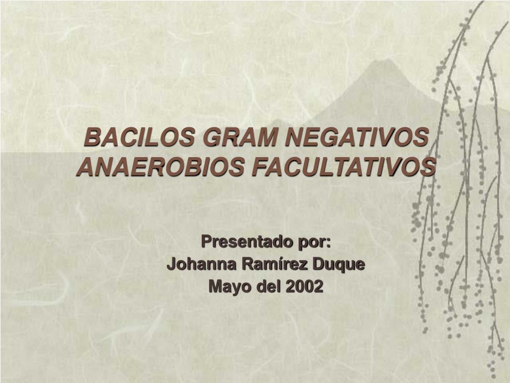 bacilos gram negativos anaerobios facultativos l.