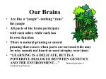 our brains