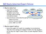 bgp route selection export policies