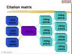citation matrix