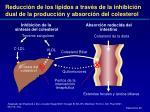reducci n de los l pidos a trav s de la inhibici n dual de la producci n y absorci n del colesterol