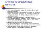 artr podos caracter sticas generales