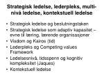 strategisk ledelse lederpleks multi niv ledelse kontekstuell ledelse