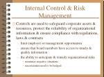 internal control risk management