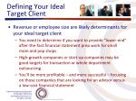 defining your ideal target client