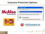 grayware protection options