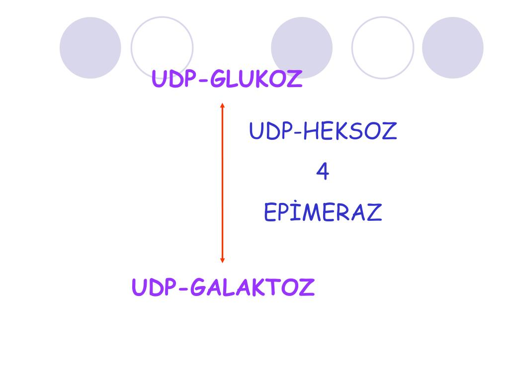 UDP-GLUKOZ