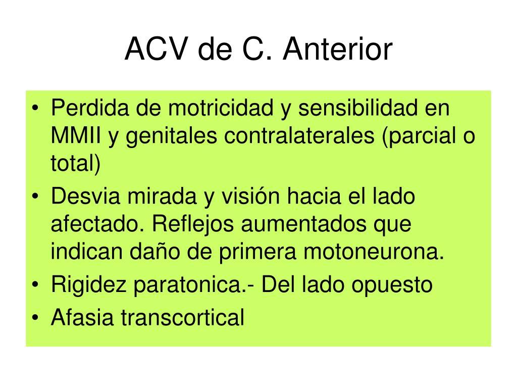 ACV de C. Anterior