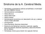 sindrome de la a cerebral media