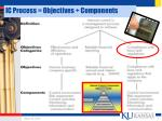ic process objectives components