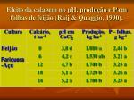 efeito da calagem no ph produ o e p em folhas de feij o raij quaggio 1990