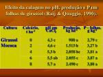 efeito da calagem no ph produ o e p em folhas de girassol raij quaggio 1990