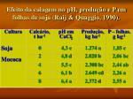 efeito da calagem no ph produ o e p em folhas de soja raij quaggio 1990