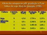 efeito da calagem no ph produ o e p em folhas de soja raij quaggio 199020