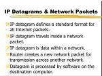 ip datagrams network packets