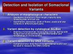 detection and isolation of somaclonal variants